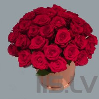 Sarkanas rozes cepuru kastē, 41 gb.,