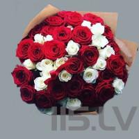 Baltas un sarkanas rozes, 101 roze, 50cm garas